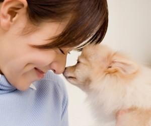 犬の口臭対策