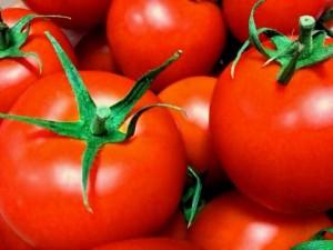 トマトを与えていい量